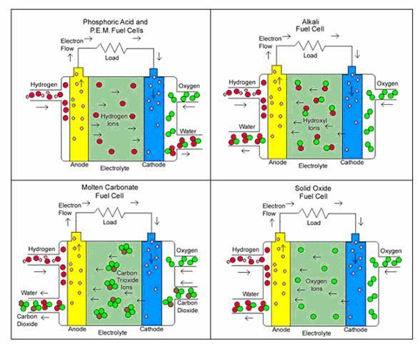 Hydrogen Oxygen Fuel Cell >> Fuel Cells